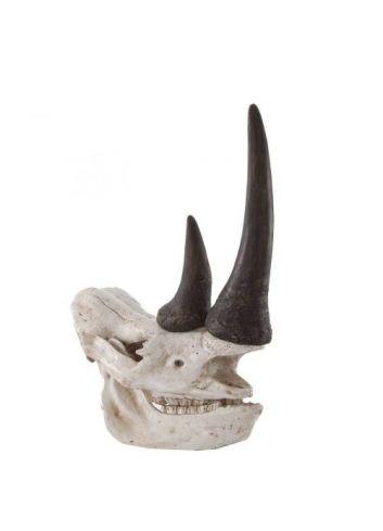 Busto Cuerno Rinoceronte